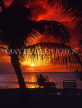 ANTIGUA, sunset and sea view, coconut trees in silhouette, ANT727JPL