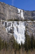 CANADA, Alberta, Jasper National Park, frozen waterfalls Weeping wall, Icefield Parkway, CAN742JPL