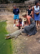 GAMBIA, Bakau Crocodile Pool and tourists, GAM857JPL