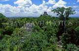 GUATEMALA, Tikal, Temple 4, in Mundo Perdido (lost world) area, GUA309JPL
