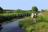 HOLLAND, Edam countryside, farmland, cow, HOL828JPL
