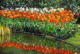 HOLLAND, Keukenhof Gardens and flowering red Tulips, HOL529JPL
