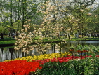 HOLLAND, Keukenhof Gardens and flowers, HOL106JPL