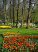 HOLLAND, Keukenhof Gardens and flowing Tulips, HOL671JPL