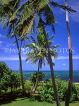 TONGA, Atata Island, coast view with coconut trees, by Royal Sunset Resort, TON126JPL