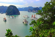 VIETNAM, Halong Bay, Ti Top Island, view towards limestone formations and cruise boats, VT1783JPL