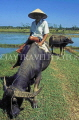VIETNAM, Hoi An, farmer on buffalo, VT379JPL
