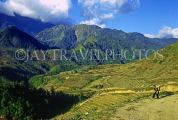 VIETNAM, Lao Cai province, Sapa, Hoang Lien mountain scenery and cultivated land, VT503JPL